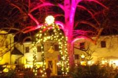Adventsfahrt-Traunsee-2013