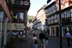 Franken2011